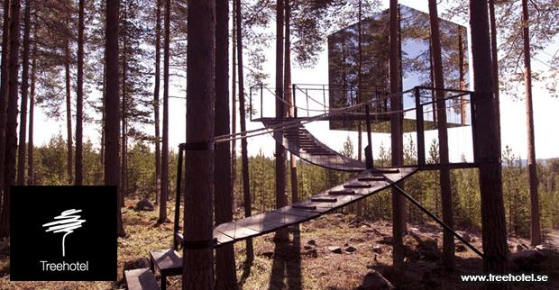 treehotel03